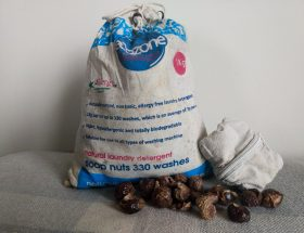 Header image Ecozone Soap Nuts Review by a Hopeful Home.